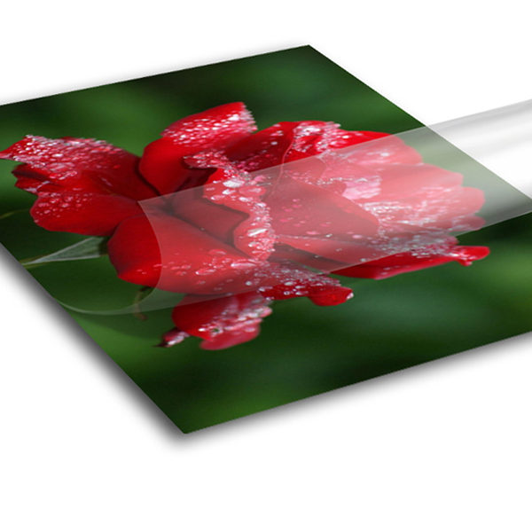 Adhesive Vinyl (High Performance)2